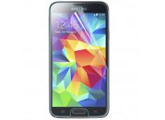 Film protecteur Samsung Galaxy S5 Mini en verre trempé
