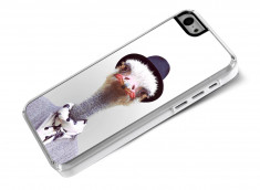 Coque iPhone 5C Smart Zoo- Autruche