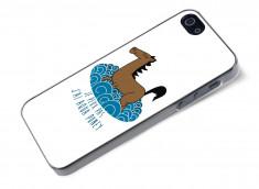 Coque iPhone 5/5S Aqua Poney
