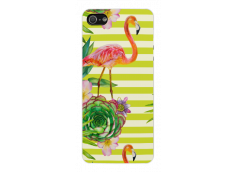 Coque iPhone 5C Pink Flamingo