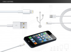 Câble Lightning vers USB iPhone 6 / iPad air 2
